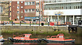 J3474 : Beaver boats, Donegall Quay, Belfast (March 2015) by Albert Bridge
