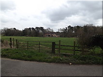 TM2384 : Field entrance & footpath off Low Road by Geographer
