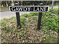 TM2484 : Gawdy Lane sign by Adrian Cable