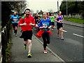 H4672 : Omagh Half Marathon - runners (10) by Kenneth  Allen