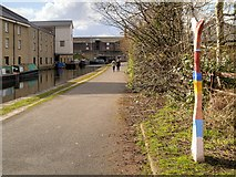 SE1437 : National Cycle Network Route 66, Leeds and Liverpool Canal at Shipley by David Dixon
