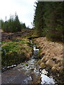 NH1200 : Small burn in the Glen Garry forest by Richard Law