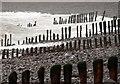 SS8747 : Groynes, Porlock Beach by Derek Harper