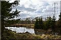 SD7218 : A hidden pond by Ian Greig