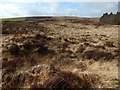 NS3778 : Old quarry pit by Lairich Rig