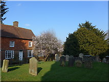 TQ3632 : St Margaret, West Hoathly: churchyard (IV) by Basher Eyre
