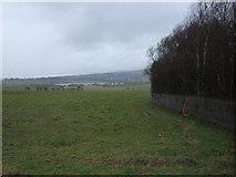 SD6807 : Farmland off Wigan Road by JThomas