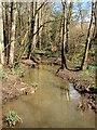 TQ3222 : Unnamed Stream, Ashenground Park by Simon Carey