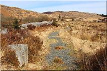 NX5071 : Path to Car Park by Billy McCrorie