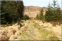 NX5071 : Path from Dunkitterick Cottage to the Car Park by Billy McCrorie