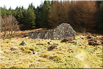 NX5071 : Dunkitterick Cottage by Billy McCrorie