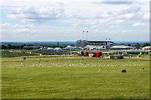 TQ2258 : Epsom Racecourse by Ian Capper