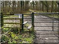 SJ9181 : Stile and Gate on Path into Gibson Wood by David Dixon