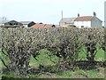 SE3997 : Mount Pleasant Farm by Christine Johnstone