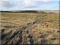 NY6564 : A Pennine Journey Footpath towards Greenhead by Les Hull
