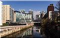 SJ8398 : River Irwell by Peter McDermott