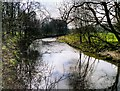 SD6526 : River Darwen, Witton Country Park (downstream) by David Dixon