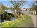 SD6627 : Witton Park, Footbridge over River Darwen by David Dixon