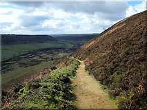 SE8493 : Footpath  into  the  Hole  of  Horcum by Martin Dawes