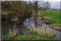SD5972 : River Lune floodplain by Ian Taylor