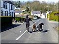 J3996 : Walking the dogs, Gleno by Kenneth  Allen