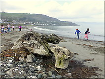 D3115 : The beach at Glenarm by Kenneth  Allen