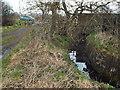 NZ3860 : Cut Throat Dene, near Sunderland by Malc McDonald