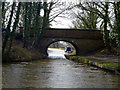 SJ9380 : Macclesfield Canal:  Ryles Bridge No 10 by Dr Neil Clifton