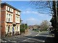 TQ3224 : Lucastes Court, Paddockhall Road, Haywards Heath by Simon Carey