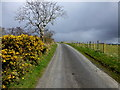H4874 : Backglen Road, Boheragh by Kenneth  Allen