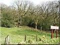 SJ9459 : Northern end of Hunthouse Wood by Christine Johnstone