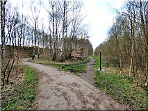 SJ9694 : View along the old track by Gerald England