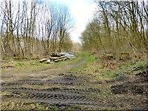 SJ9694 : Godley Junction by Gerald England