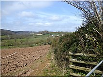 SY2197 : The valley of the Offwell Brook by David Smith