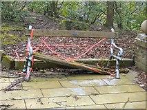 SJ9694 : Bench at Godley Hill War Memorial by Gerald England