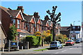 TV5999 : Houses on Victoria Drive by Oast House Archive