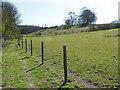 TQ0851 : Footpath to Daws Dene by Alan Hunt
