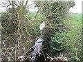 SK4331 : Thulston Brook by Ian Calderwood