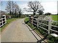 TM1481 : Bridge over a stream on Burston Road by Adrian S Pye