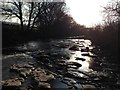 NY9038 : River Wear - facing West by Ayre