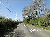 TM1583 : Dickleburgh Road, Shimpling by Adrian S Pye