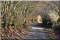 SS8739 : West Somerset : Thorne Lane by Lewis Clarke
