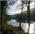 SO5615 : Canoeists at Symonds Yat by John Winder