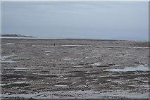 SH5873 : Mud, Menai Straits by N Chadwick