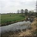 SK8217 : Golf buggy crossing the small river on the course at Stapleford Park by Steve  Fareham