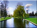 TQ1568 : Hampton Court Palace Gardens, North Canal by David Dixon