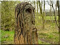 SD5830 : Carved Man at Brockholes Nature Reserve by David Dixon
