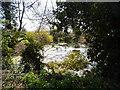 TG0300 : Pond near Money Hill Farm by Bikeboy