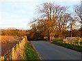 NY5342 : Road, Ainstable by Andrew Smith