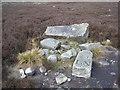SE1153 : Fallen boundary stone by John Illingworth